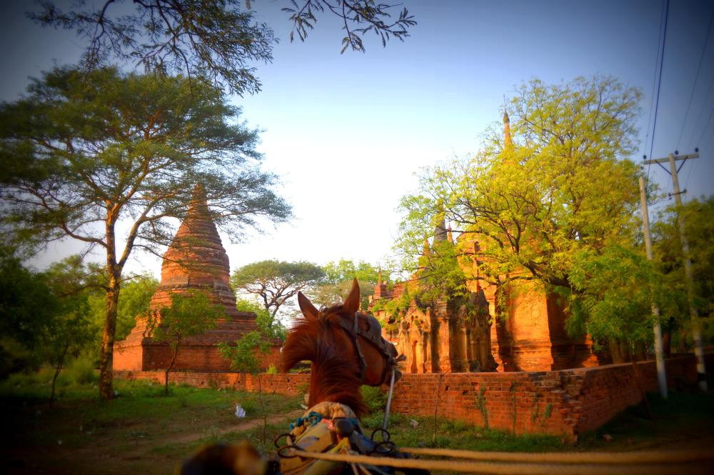 horse temples